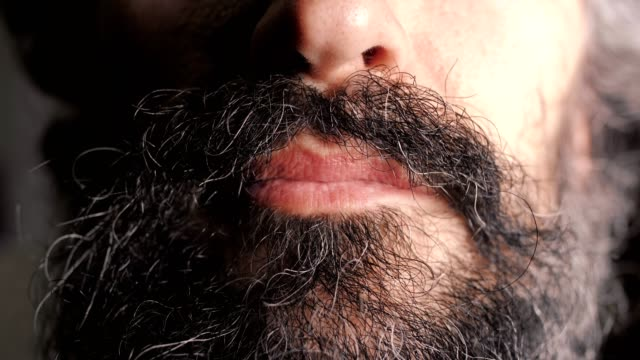 Close up of the face of a middle aged handsome brunette man with a partly white-haired curly beard, touching it and smiling, portraiture
