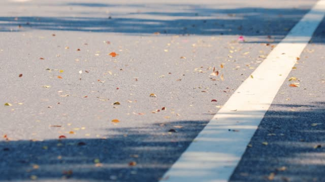 vídeos de stock e filmes b-roll de 4k uhd close up of the wind whirls dry leaves on the road. blur bike pass have wind blow dry leaves. - passagem de ano