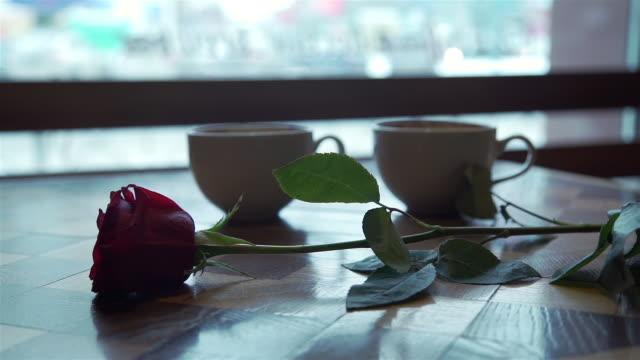 primo tempo di due tazze di caffè e fiore di rosa - romanticismo concetto video stock e b–roll