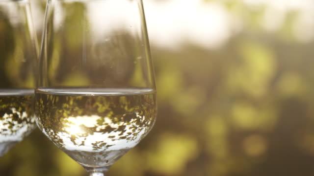 närbild av två glas vitt vin under solljus - vitt vin glas bildbanksvideor och videomaterial från bakom kulisserna