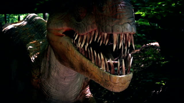 Close up of Tyrannosaurus Rex dinosaur in wild forest, slow motion