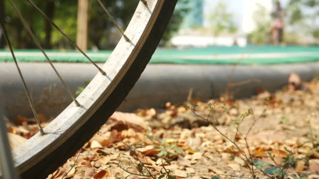 Close up of wheels o people Ride Bicycle Path in Park video