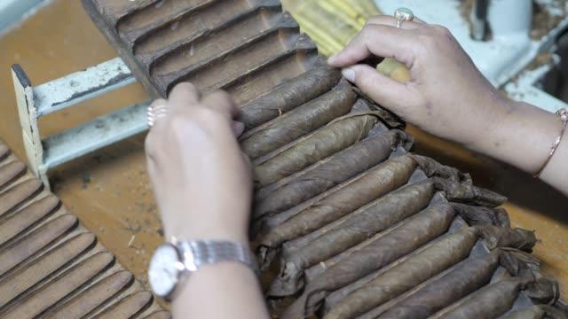 bir puro fabrikası içinde haddeleme makinesinden puro düzenleyen kadın elleri yakın - puro stok videoları ve detay görüntü çekimi