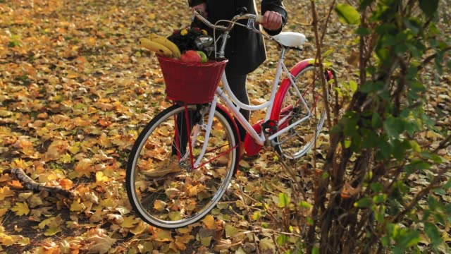 Close up of young woman pushing retro bike with basket on front in public park. Idyllic autumn day