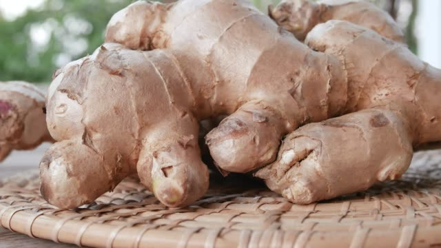 close up on fresh ginger. close up on fresh ginger. ginger spice stock videos & royalty-free footage