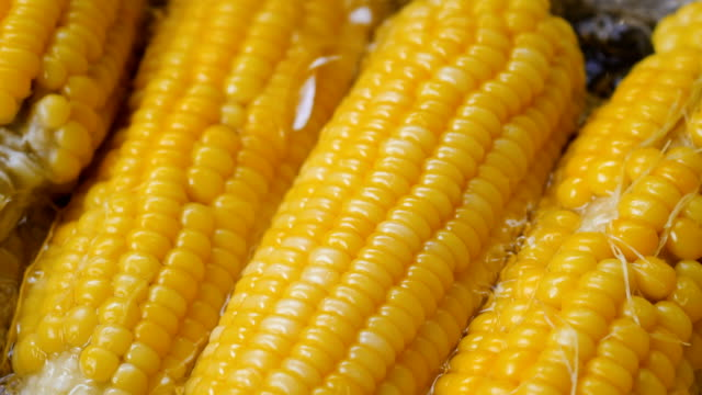 nära upp skott majs kokande i grönsaksgryta höga vitamin frukt och grönsaker - skalhylsa bildbanksvideor och videomaterial från bakom kulisserna