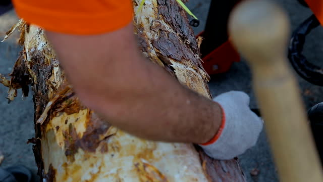 Close up shot of a male carpenter using a measuring tape and a pencil to mark a length on wooden deck video