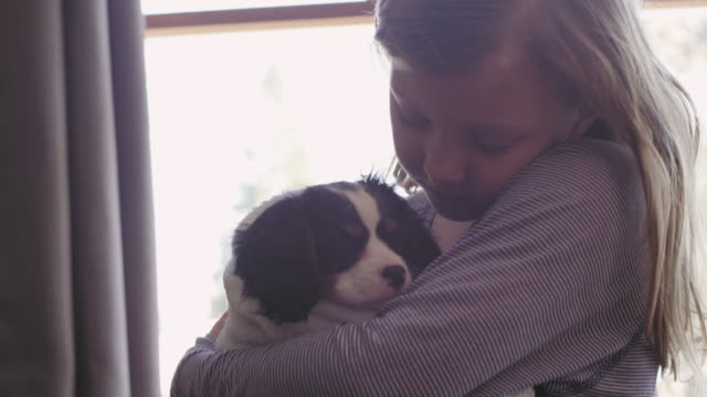 Close up shot of girl hugging her adorable puppy while being wrapped with a towel video