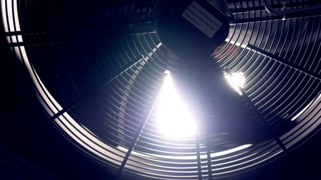 close up shot of industrial fan in a cryptocurrency mining factory. - lama oggetto creato dall'uomo video stock e b–roll