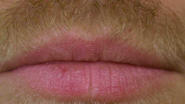 close up shot of opening male mouth with a mustache and beard - baffo parte del corpo animale video stock e b–roll
