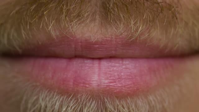 nahaufnahme von lächeln männlichen lippen mit einem schnurrbart und bart - lippen stock-videos und b-roll-filmmaterial