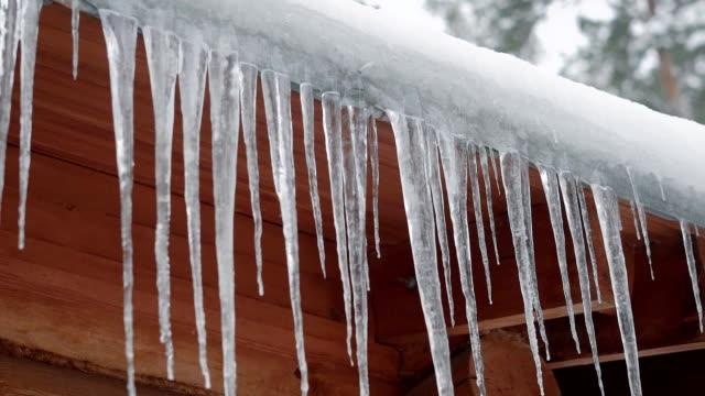 nära upp skott av de långa istappar som hänger på taket av ett trähus någonstans i skogen vinter - icicle bildbanksvideor och videomaterial från bakom kulisserna