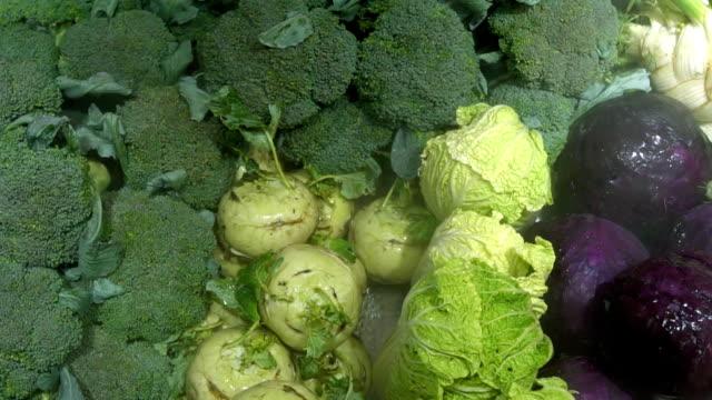 vídeos de stock e filmes b-roll de close up view of cabbages. - crucíferas