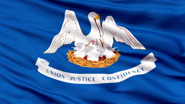 Close Up Waving National Flag of Louisiana video