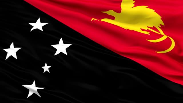 Close Up Waving National Flag of Papua New Guinea video