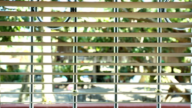 Close window blinds video