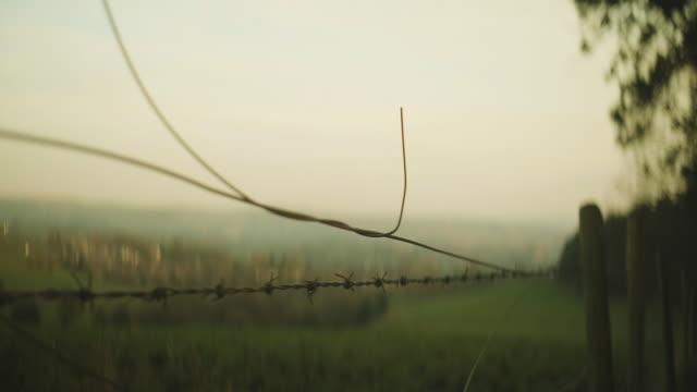 vídeos de stock e filmes b-roll de close yo barbed wire countryside anamorphic unsqueezed - cercado