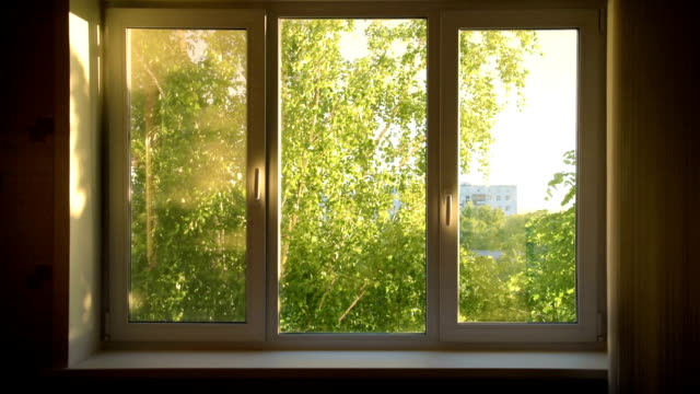 stockvideo's en b-roll-footage met gesloten wit venster met uitzicht op de groene tuin - garden house