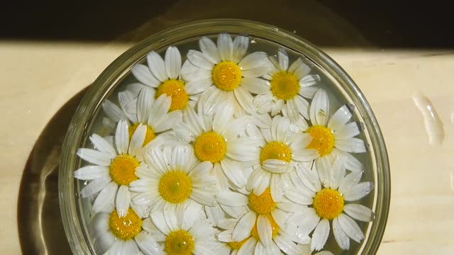 A close-up, a white cup, there are chamomile flowers in it. The cup is filled with boiling water, chamomile tea rotating
