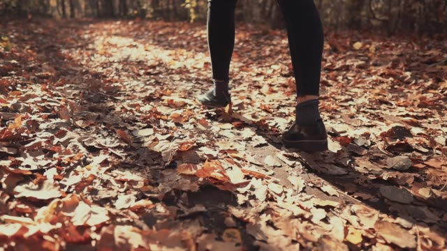 close-up back view of female feet walking in autumn woodland - fare un passo video stock e b–roll