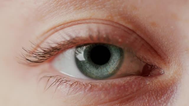 vídeos de stock e filmes b-roll de close-up beautiful blue eye - piscar