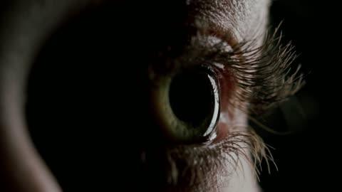 vídeos de stock e filmes b-roll de close-up beautiful blue eye - primeiro plano