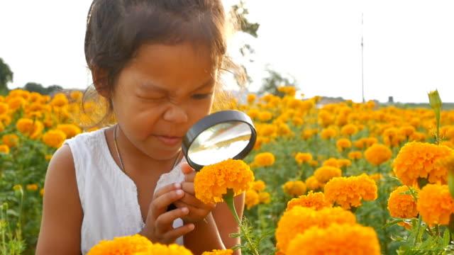 close-up schönheit mädchen mit lupe in floral goldfeldes. konzept der selbstlernende reisen lifestyle im frühling. slowmotion videomaterial fullhd 1920 x 1080. high-speed kamera schuss 50 fps. - lupe stock-videos und b-roll-filmmaterial