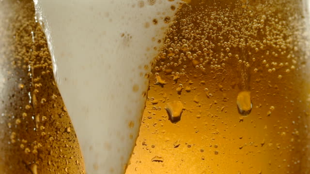 Close-up beer foam in a glass in slow motion glass of beer with drops condensation stock videos & royalty-free footage