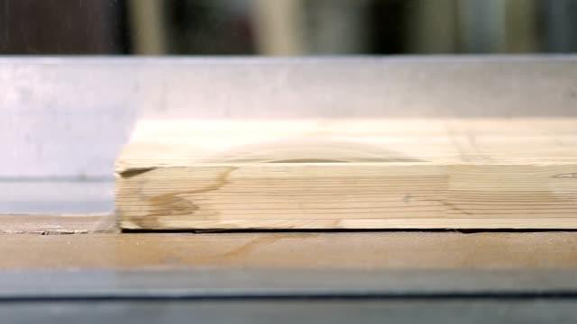closeup circular saw cutting wooden plank - segatura video stock e b–roll