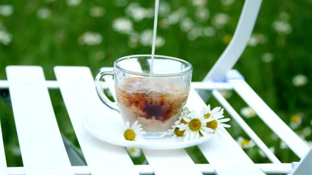vídeos y material grabado en eventos de stock de primer plano, desaceleración. en un plato blanco, decorado con margaritas, hay un vaso con té. la leche se vierte en él. en el fondo hay un prado verde, de manzanilla - manzanilla
