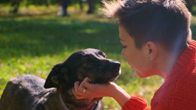 close-up dog licks the face of the mistress - leccare video stock e b–roll