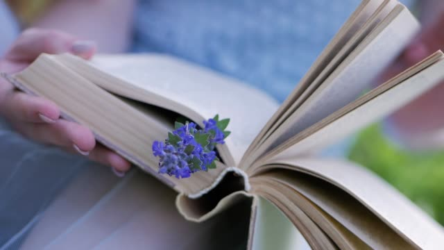 Close-up female hands flip through pages of a book with wildflower