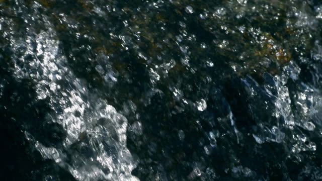 Close-up forest stream water falling video