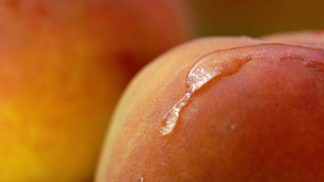 close-up of a clear waterdrop flowing down the surface of a juicy peach - albicocca video stock e b–roll