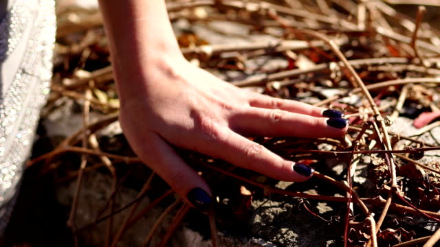 Close-up of a girl's hand on the dry branches of wild grapes in the autumn Park.