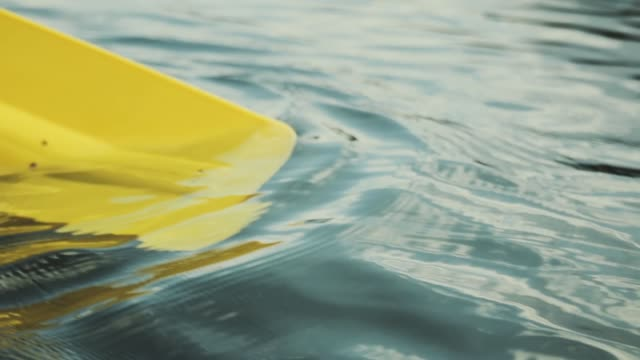 Close-up of a paddle in the water.