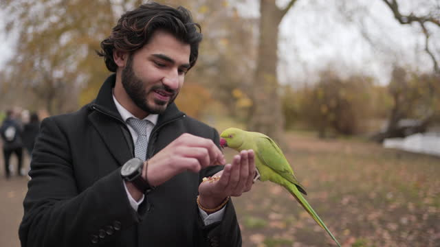 A close-up of a smart young man feeding a parrot