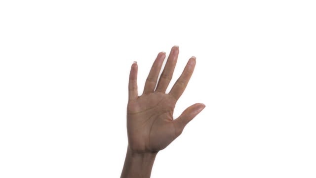 close-up of a woman with clenched fist opening her palm and clenching fist again, isolated on a white background - palm of hand stock videos & royalty-free footage