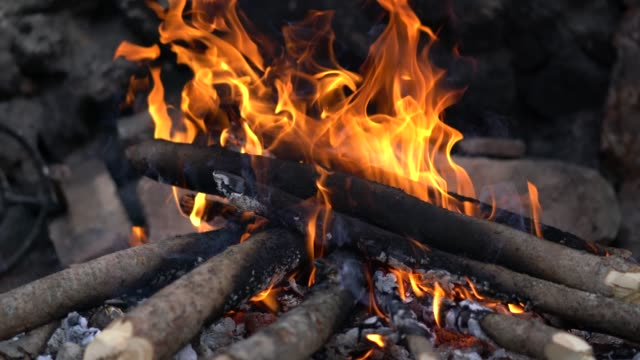 Close-up of a wood fire burning