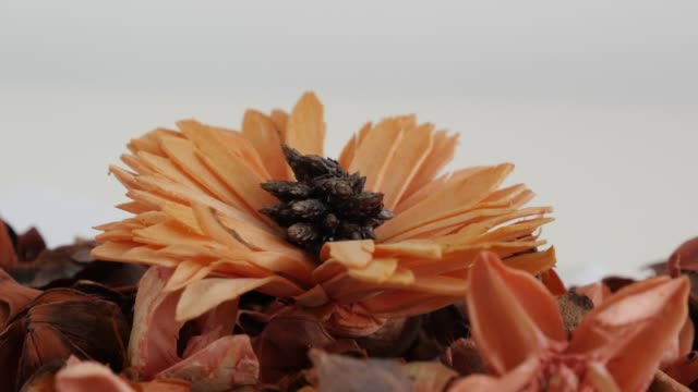 Close-up of colorful potpourri slow pan 4K