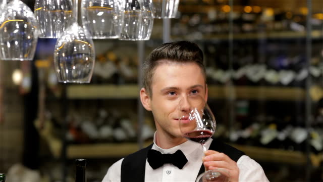 Close-up of confident man in waistcoat and bow tie video
