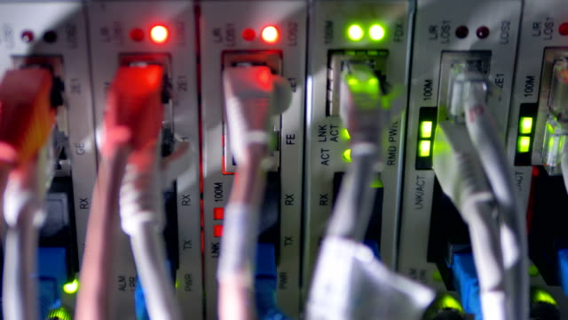 A close-up of Ethernet cables plugged into a switch. video