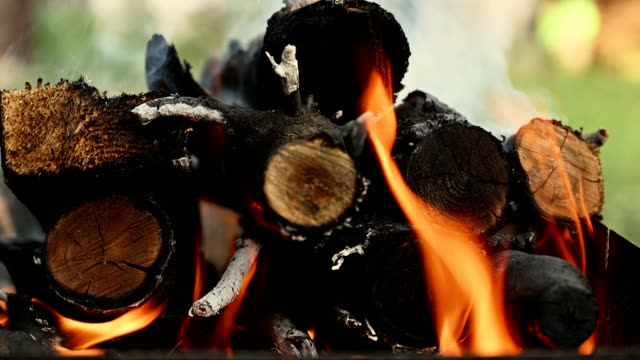 vídeos de stock e filmes b-roll de close-up of firewood in flame - inflamável