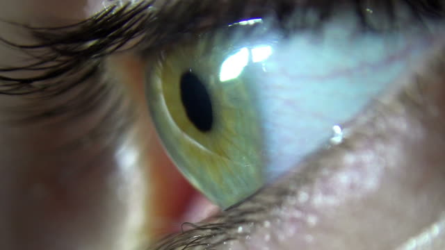 Close-up of green female eye blink and iris focusing video