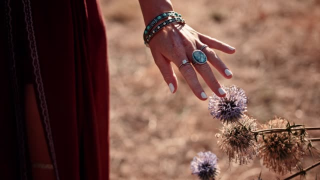 Close-up of hippie woman's hands touching wildflowers in field video