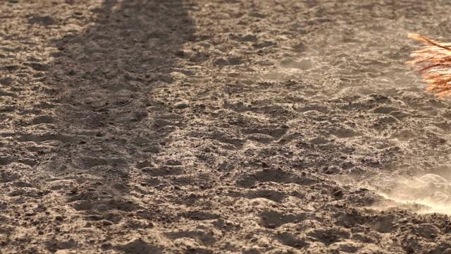närbild av ben av häst i träning på hästgård - hästhoppning bildbanksvideor och videomaterial från bakom kulisserna