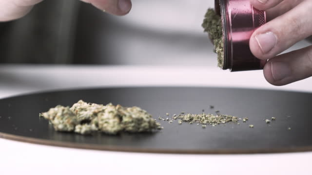Close-up of male hands using grinder with medical marijuana buds. Close-up of male hands using grinder with medical marijuana buds. Cannabis is a concept of herbal or alternative medicine hashish stock videos & royalty-free footage