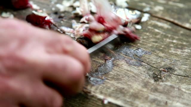 vídeos y material grabado en eventos de stock de primer plano de mans manos limpiar las tripas de pescado de la tabla para cortar madera - cuchillo cubertería