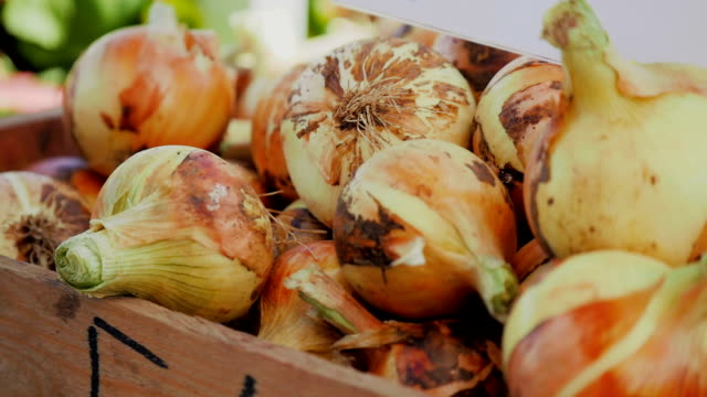 Close-up of onions in a box at market