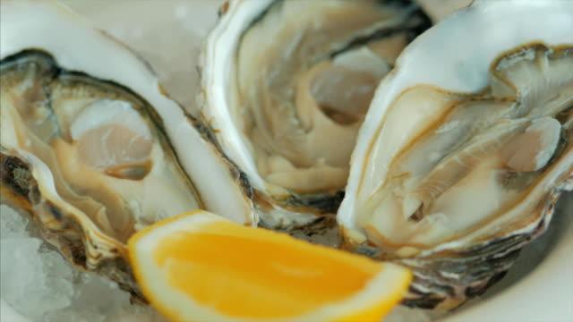 Gros plan d'huître au citron sur une plaque de glace - Vidéo